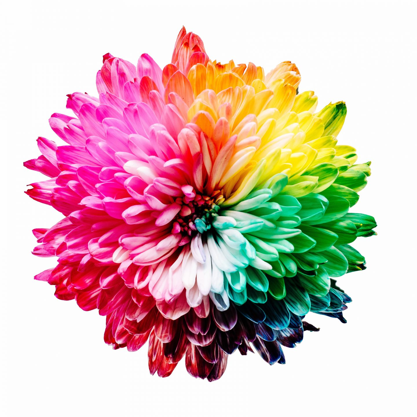 Psychology of Colors Infographic – How Colors Affects our Life